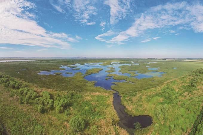 """苏州有望迎来""""首个国际重要湿地"""""""