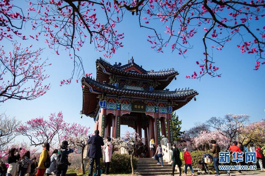 2021第26屆中國南京國際梅花節在南京梅花山正式開幕